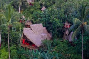 Tree House Dominican Republic