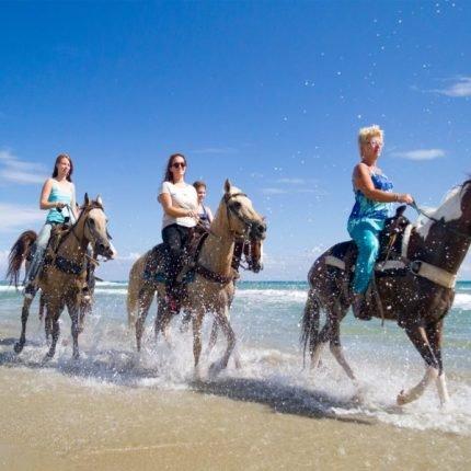 Dominican Republic Tours 2020 - Dream beaches and unique landscape 6