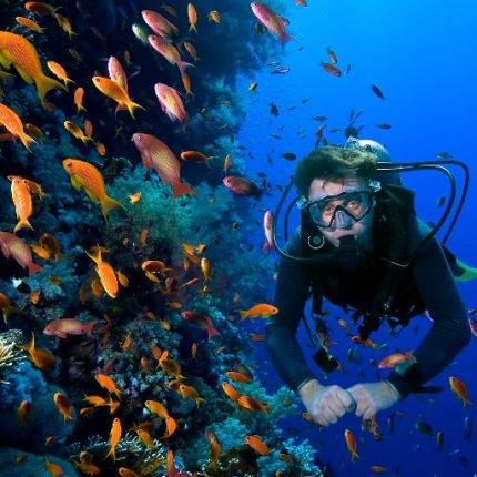 Dominican Republic Tours 2020 - Dream beaches and unique landscape 5