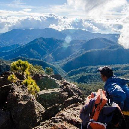 Dominican Republic Tours 2020 - Dream beaches and unique landscape 3