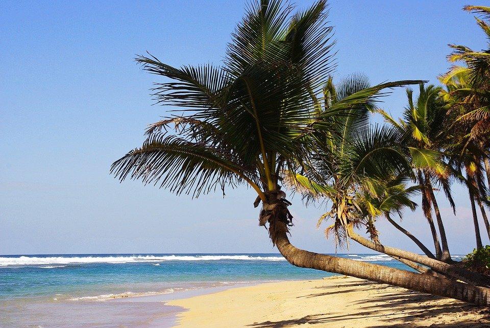 karibischer Traumstrand in Punta Cana