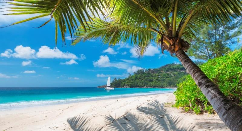 Kombireise Dominikanische Republik und Jamaika 1