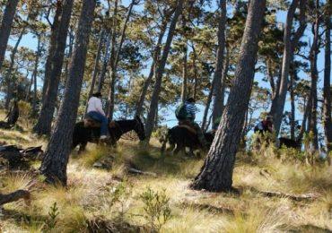 Pico Duarte Trekking