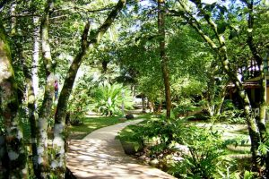 Punta Cana, Bayahibe, Barahona, Jarabacoa und Samaná 65