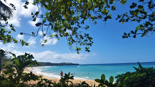 Dominican Republic Travel - Excursiones and Trips